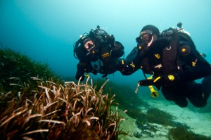 Rebreather diving at Surrey Dive Centre with the Dive Academy will open up a whole new world for you. Start Now and glide effortlessly and bubble-free for hours!